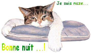 bonsoir - Page 3 6eehmd3n