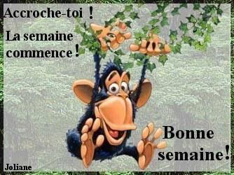 Bonjour Du Lundi 29 Decembre Pause Cafe Assistante