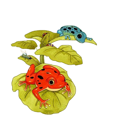 Les grenouilles - Page 3 Ft05smj4